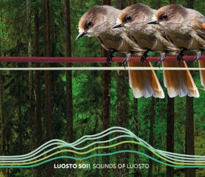 Sounds of Luosto 2021 – Unforgettable moments and music in the Spirit of Luosto