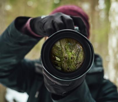 Kuvaa Lapin myyttistä luontoa Luostolla, Pyhätunturilla ja muissa sadunhohtoisissa pohjoisissa paikoissa